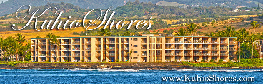Kuhio Shores Condominiums